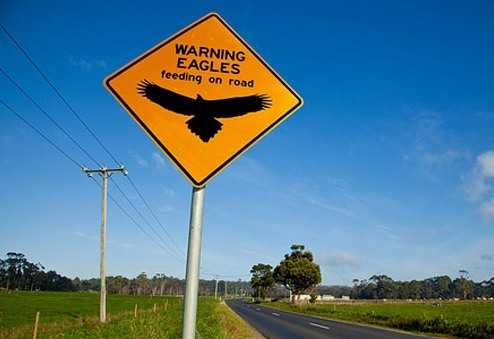 15 самых смешных и необычных дорожных знаков нашей планеты