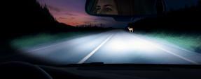 Опасное вождение— как его толковать— журнал Зарулем