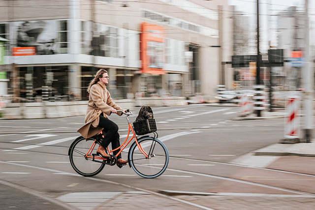 Где можно ездить на велосипеде: рекомендации для начинающих вело-байкеров и правила дорожного движения