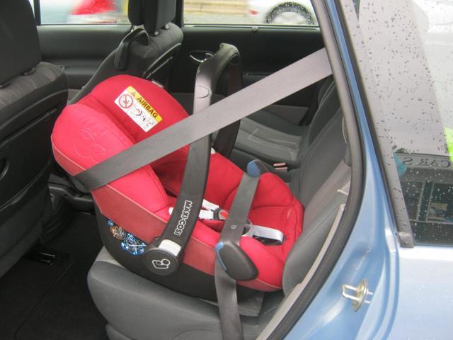 Как пристегнуть переноску в машине?